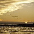Sunset At Natural Bridges By David Kerbyson  by California Coastal Commission