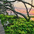 Sunset At Pea Island Wildlife Refuge Outer Banks I by Dan Carmichael