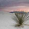 Sunset At White Sands by Jean Noren