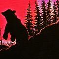 Sunset Bear by Al Fritz