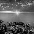 Sunset Bliss Bw by Michael Ver Sprill
