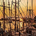 Sunset Boat Masts At Dock Morro Bay Marina Fine Art Photography Print Sale by Jerry Cowart