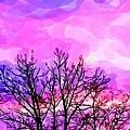 Sunset by Chris Butler