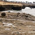 Sunset Cliffs Shoreline 2 by ANP Studios