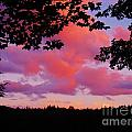 Sunset Clouds by Janell R Colburn