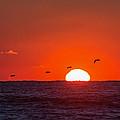 Sunset by David Faison