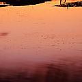 Sunset Discourse- Gorton Pond Warwick Rhode Island by Lourry Legarde