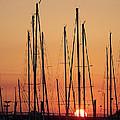Sunset by Ernie Echols