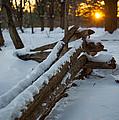 Sunset Fence by Scott Hafer
