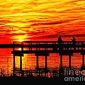 Sunset Fishing At The Pier by Nick Zelinsky