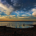 Sunset Fishing  Hot Dogggg by Carolyn Fletcher