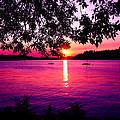 Sunset From Point Fosdick Gig Harbor Washington by Carlene Salazar