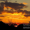 Sunset Glow by Marilyn Smith
