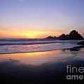 Sunset Gold Big Sur by Charlene Mitchell