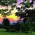 Sunset Golf Course by Mark Dottle