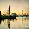 Sunset Harbor Glow by Joan McCool