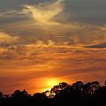 sunset II by Zina Stromberg