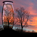 Sunset In A Bottle by Cindy Singleton