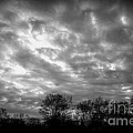 Sunset In Black And White by Kitrina Arbuckle