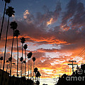 Sunset In Hollywood by David Wallace Crotty