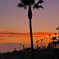 Sunset In Laguna Beach by Mariola Bitner