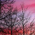 sunset in late February by John Magnet Bell