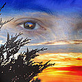 Sunset In My Eyes by Jim Fitzpatrick