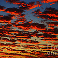 Sunset In The Clouds by Mariola Bitner