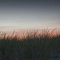 Sunset In The Dunes by Steve Gravano