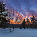 Sunset In The Park Square by Bill Wakeley