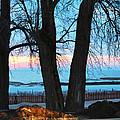 Sunset In The Trees by Linda Kerkau