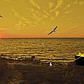 Sunset by Jim Markiewicz