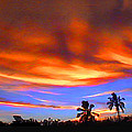 Sunset Key Largo Filtered by Duane McCullough