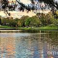 sunset lake I by Chuck Kuhn