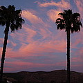 Sunset Landscape Xi by Linda Brody