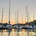 Sunset Masts by Lori Douthat