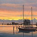 Sunset-north Dock At Pelee Island   by Paul Krapf