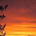 Sunset Of Life  by Robert Nacke