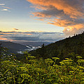 Sunset On Clingman's Dome by Eric Albright