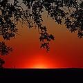 Sunset On Jekyll Island by Kathryn Meyer