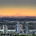 Sunset On Mount Hood by David Gn