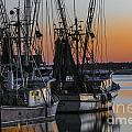 Shem Creek Sunset - Charleston Sc by Dale Powell