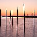 Sunset On The Bay I by Denise Bush