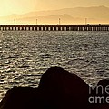 Sunset On The Bay by Shauna Fackler