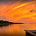 Sunset On The Cape Fear River by Phil Mancuso