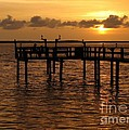 Sunset On The Dock by Peggy Hughes