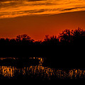 Sunset On The Refuge  -  150218a-197 by Albert Seger