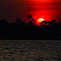 Sunset On The Zambezi  by John  Nickerson