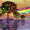 Sunset On Trees And Ocean by Susanna Katherine