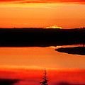 Sunset On Whitefish Lake Norhwest Territories Canada by Dave Welling